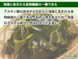 海藻に含まれる食物繊維の一種である