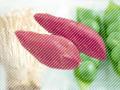 食べ過ぎを防ぐ不溶性食物繊維の多い食品は?