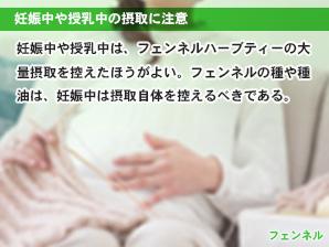 妊娠中や授乳中の摂取に注意