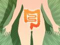 食物繊維で、腸のデトックス力を高めよう