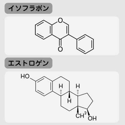 イソフラボンとエストロゲンの化学式
