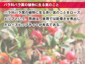 バラ科バラ属の植物に生る実のこと
