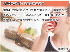 満腹中枢が働くと食欲が止まる