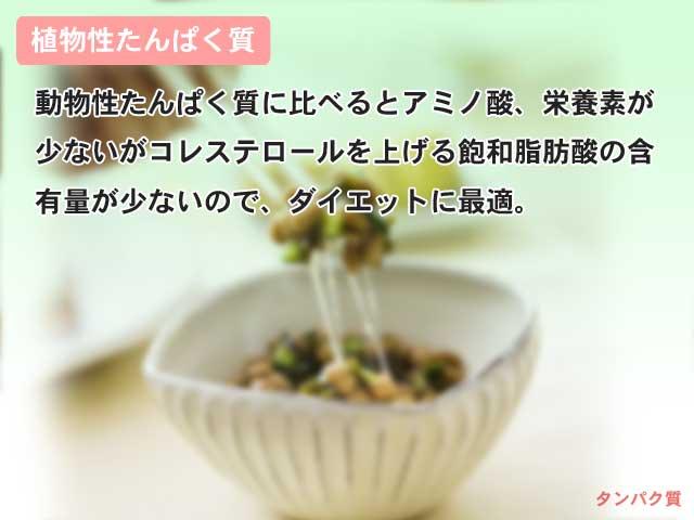 植物性たんぱく質