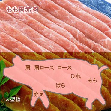 豚もも肉赤肉