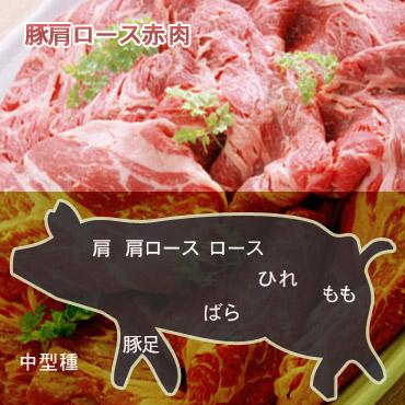 豚肩ロース中型種赤肉