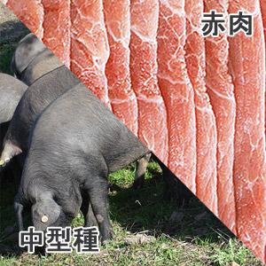 豚もも肉中型種赤肉