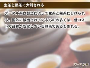 生茶と熟茶に大別される