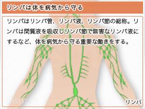 リンパは体を病気から守る