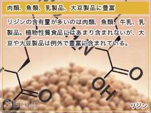 肉類、魚類、乳製品、大豆製品に豊富
