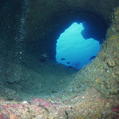 謎の海中イメージ