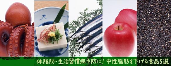中性脂肪を下げる食品5選(タコ・豆腐・さんま・りんご・ごま)