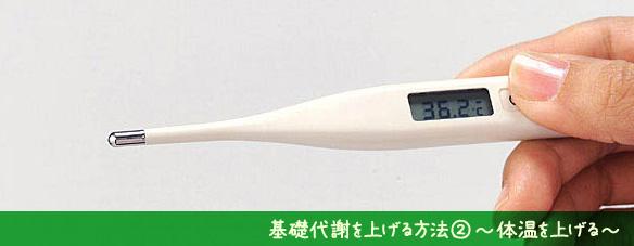 基礎代謝-体温