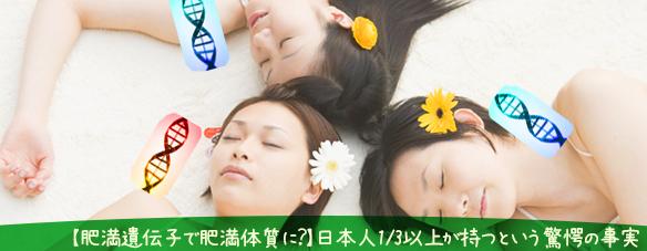 【肥満遺伝子】日本人1/3以上が持つという驚愕の事実