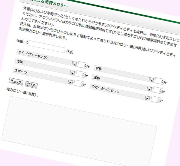 消費カロリーチェックページイメージ