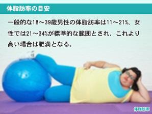 体脂肪率の目安