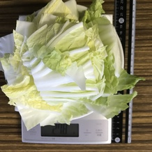 カロリー 白菜