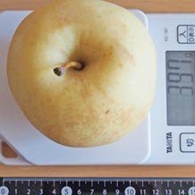 一個 カロリー は の りんご