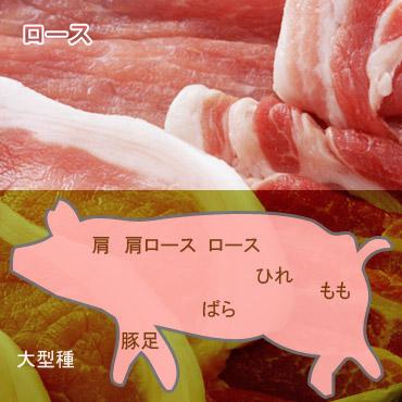 カロリー 豚 ロース